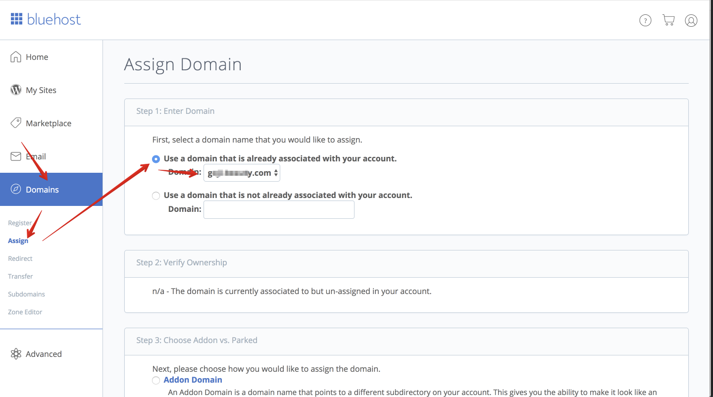 bluehost_domain_1