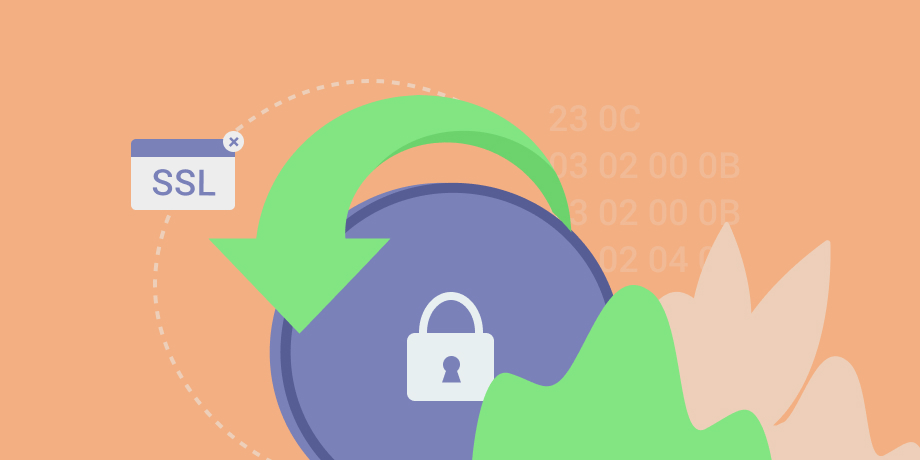 How to avoid traffic loss due to the SSL absence